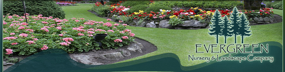 Evergreen Nursery and Landscape Company